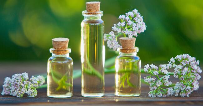 Dalla valeriana alla melissa: le erbe giuste contro il mal di testa