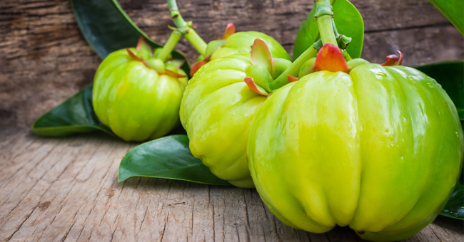 la garcinia cambogia pura come si assume