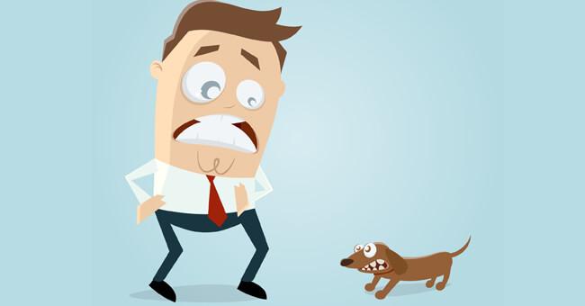 Sogno un cane che m'insegue: che significa?