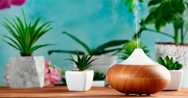 Scegli l'olio essenziale giusto per ogni ambiente della casa