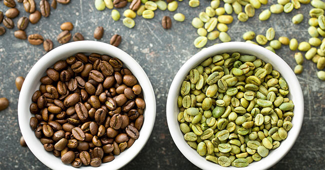 chicco di caffè verde puro svetol gcaly