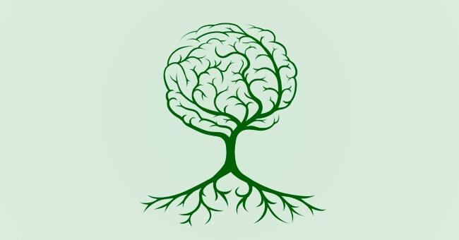 Cervello e intestino: quali connessioni?
