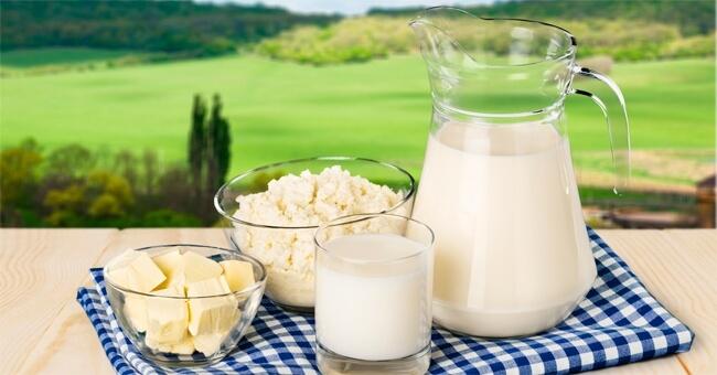 Risultati immagini per latte e derivati