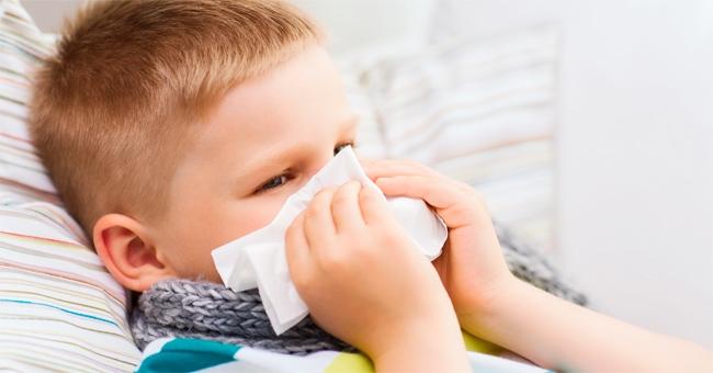 Erbe e rimedi naturali per i primi raffreddori