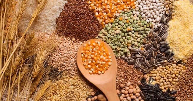 Kamut, riso e quinoa, gli antiage del tuo cervello