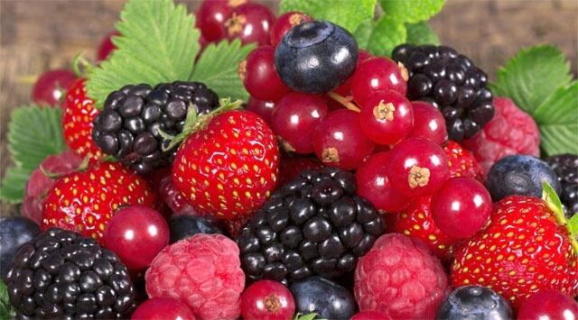 La top ten degli antiossidanti