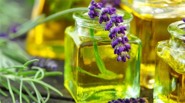 Lavanda, cipresso e salvia: il bouquet anti odore