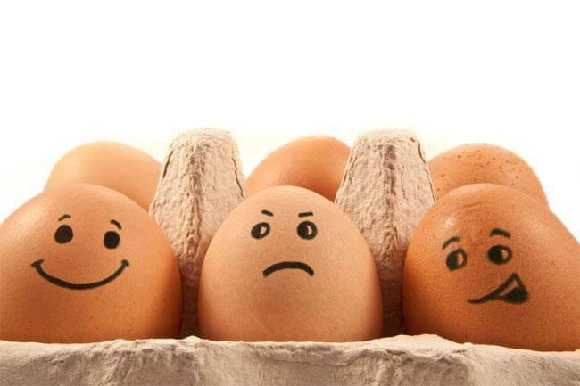 Nelle uova una miniera di sostanze utili