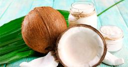 Cocco, proprietà e benefici del frutto delle spiagge