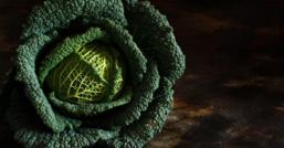 Cavolo nero: il superfood dei primi freddi