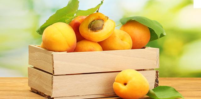 Albicocca: proprietà, benefici, valori nutrizionali