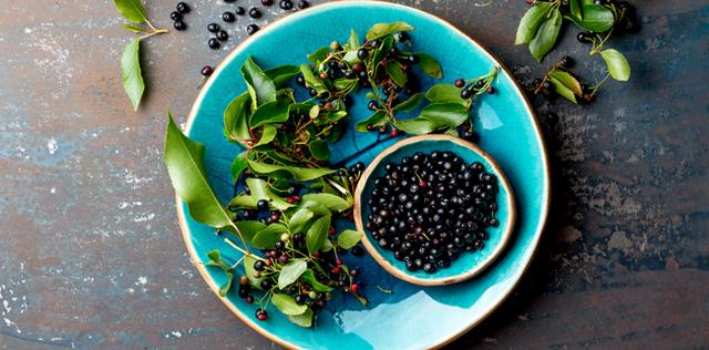 Maqui, l'antiossidante della tua estate