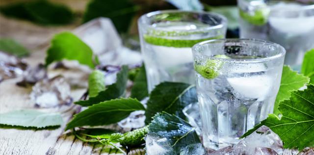 Acqua di cactus: l'integratore giusto per eliminare grasso e ritenzione