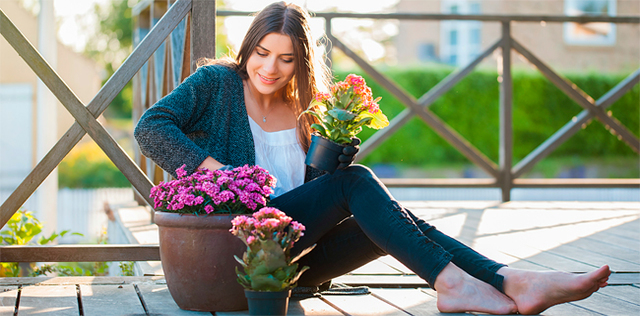 Giardino e balcone d'estate: curali con questi alleati naturali
