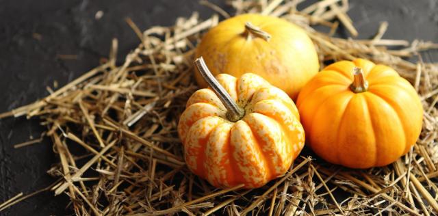 Zucca: proprietà, benefici e calorie