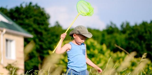 Bambini e punture d'insetto: il pronto soccorso naturale