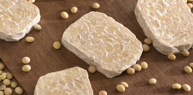 Tempeh: il cibo ricco di proteine che fa bene all'intestino